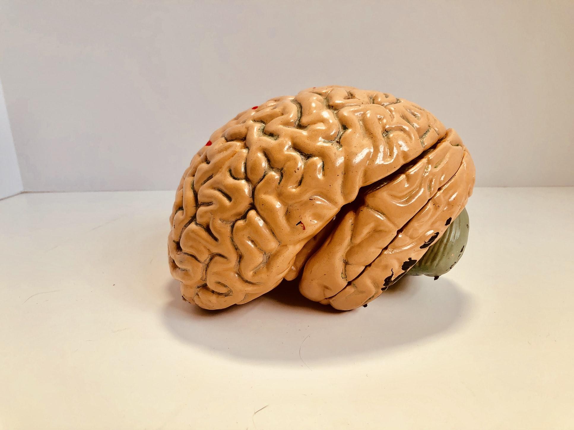 Même si votre cerveau est préoccupé par le négatif